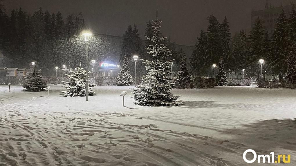 На Новосибирск обрушится снегопад во вторую неделю декабря