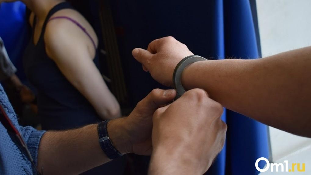 «Насмерть сбил ребёнка»: глава Следственного комитета РФ требует ареста водителя-лихача из Новосибирска