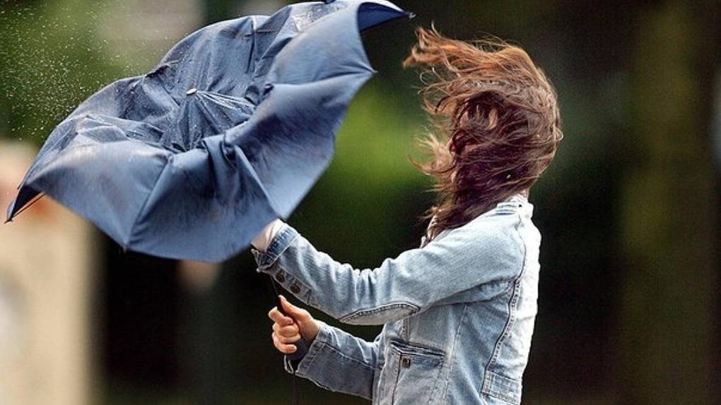 Новосибирские синоптики объявили штормовое предупреждение