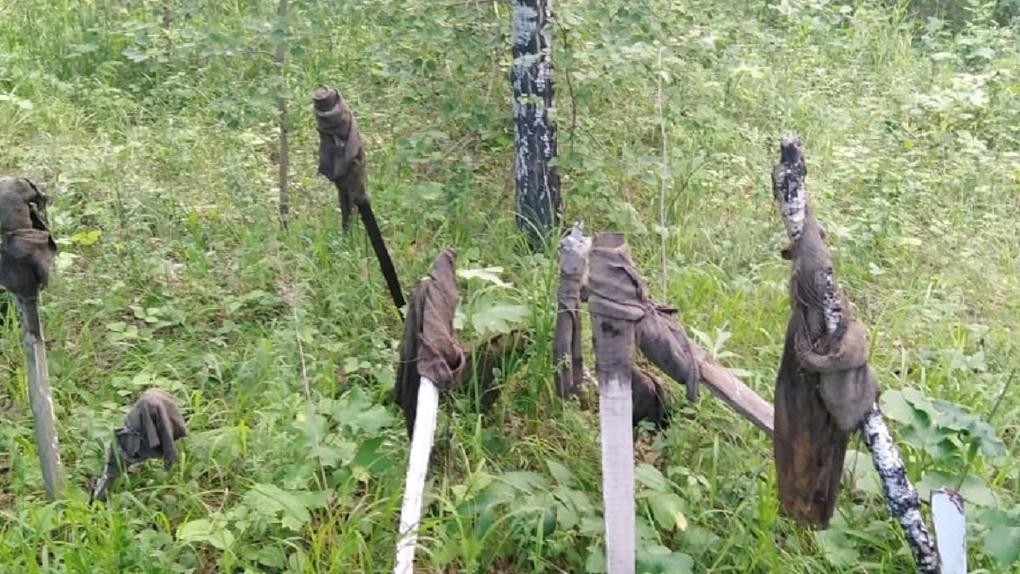 Вместо грибов в омском лесу нашли ритуальные факелы