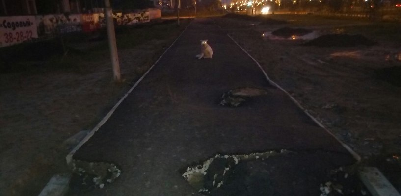 В Омске смыло дождем беговую дорожку, сделанную всего четыре дня назад