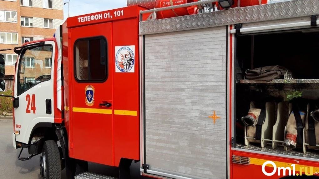 Омская область в опасности: МЧС предупреждает о возможности крупных пожаров