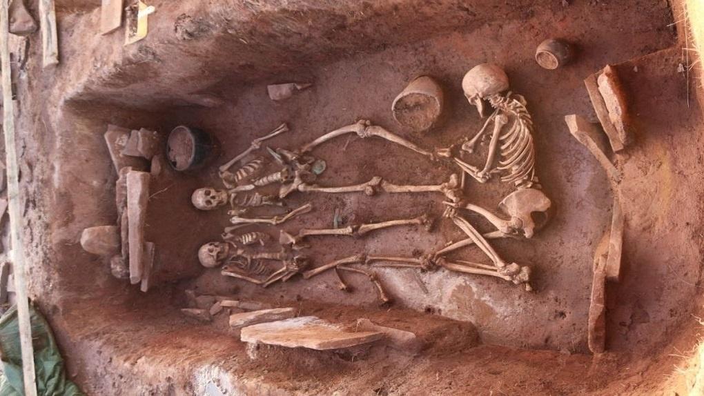 В Новосибирск на реставрацию отправят останки древнего захоронения из Хакасии