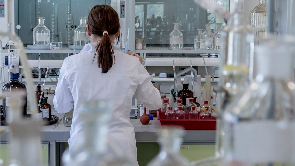 Появился прогноз создания вакцины от коронавируса