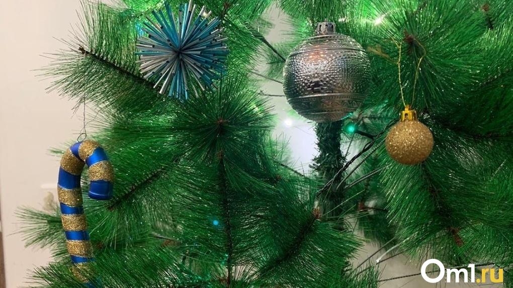 Губернатор Новосибирской области назвал любимую новогоднюю традицию своей семьи