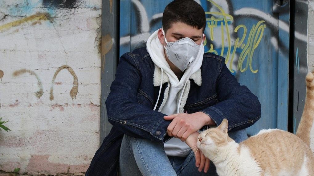 Коронавирус в мире, России и Новосибирске: актуальные данные на 12 апреля