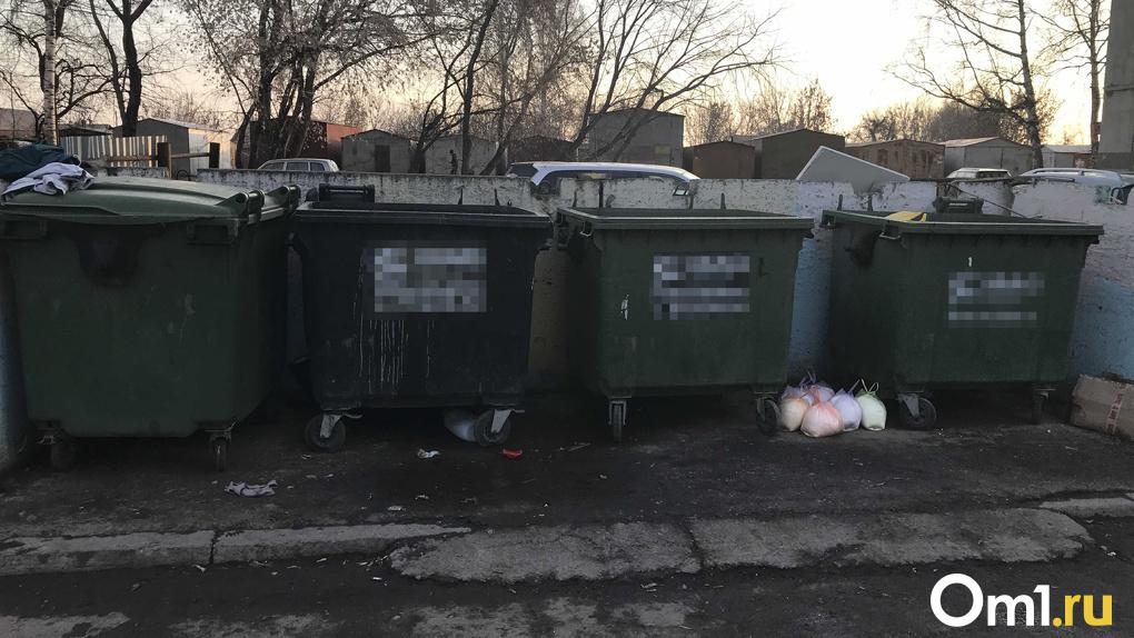 Власти Новосибирска пообещали не допустить мусорного коллапса в новогодние праздники