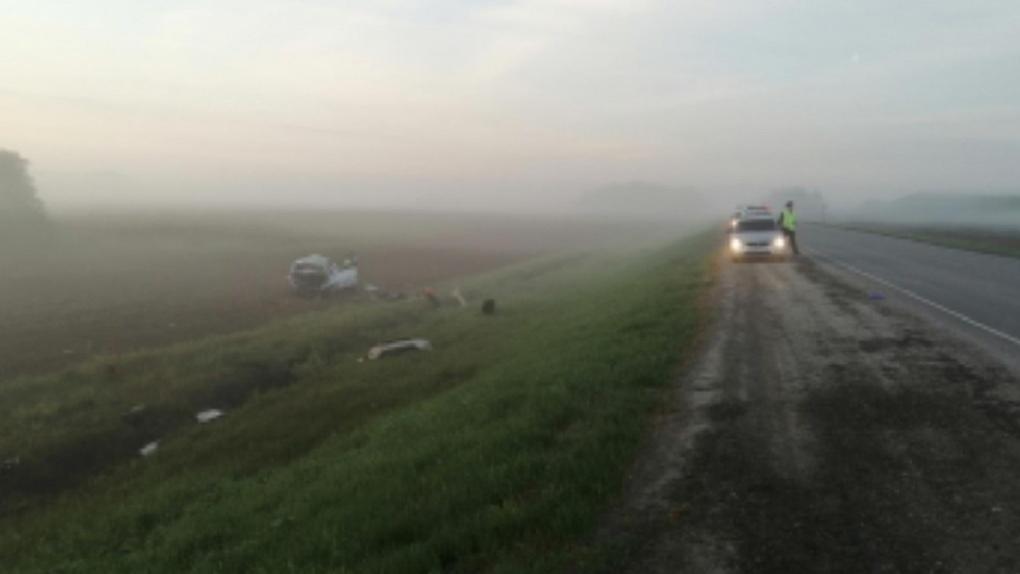 Водитель, оштрафованный на омской трассе за непристёгнутый ремень, попал в смертельное ДТП