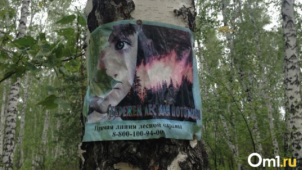 Омичам запретят въезжать в леса ещё на три недели