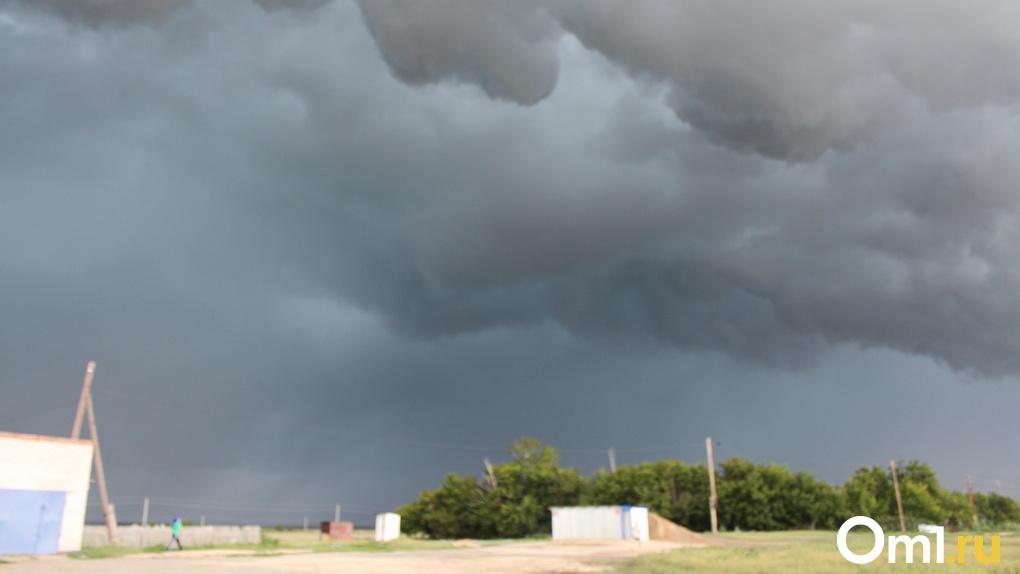 Ураганный ветер и резкое похолодание надвигаются на Новосибирск