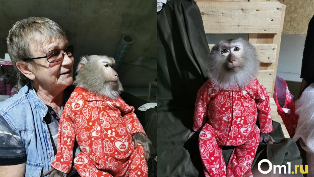 Под Новосибирском 22 года живет обезьяна, которая любит сало и шнапс