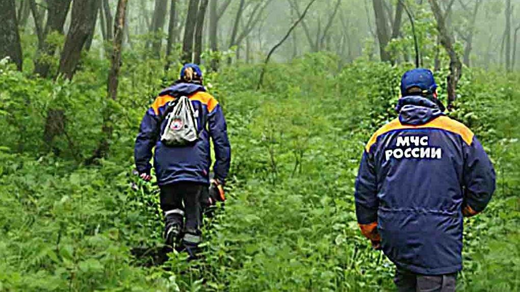 Сотрудники омского МЧС всю ночь помогали искать пропавшего ребенка