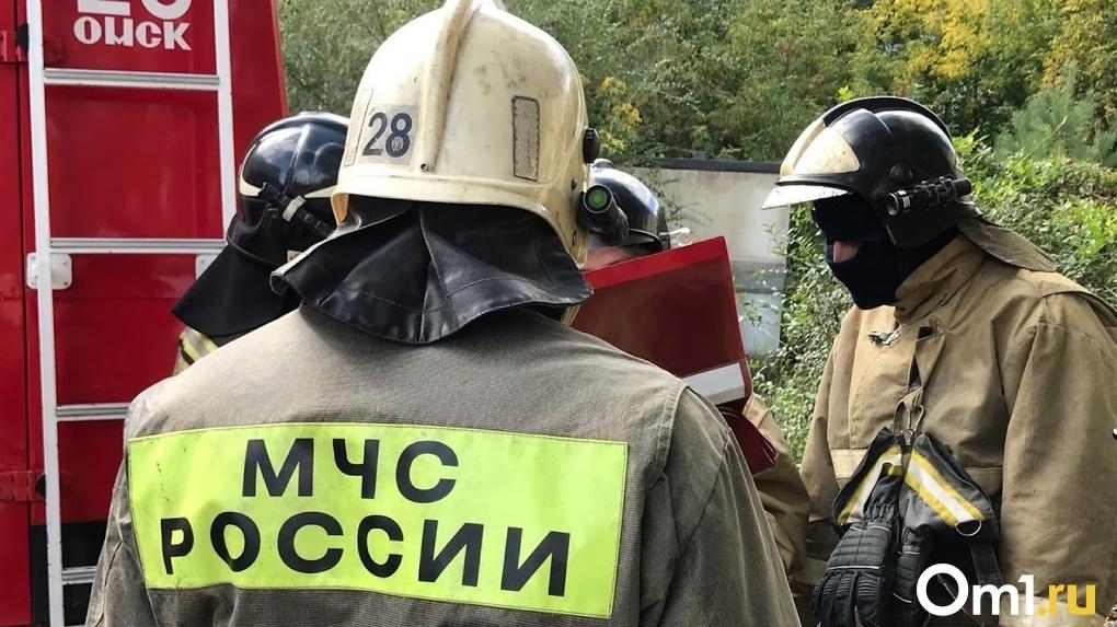В Омске на Левом берегу загорелся 10-этажный дом