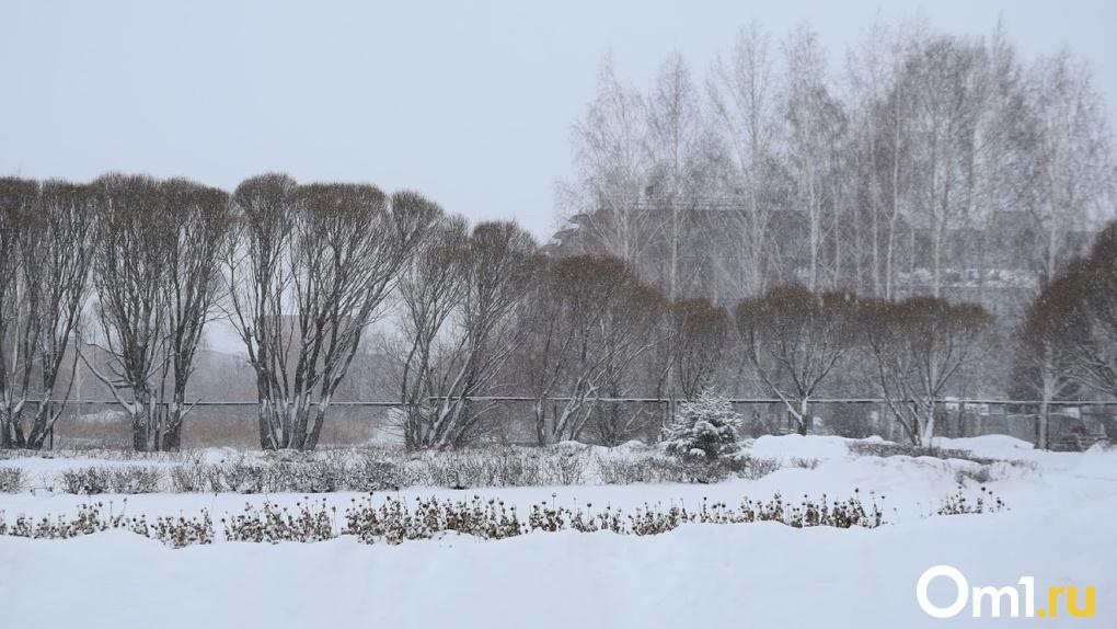 Декабрь в Омске начинается с суровых морозов