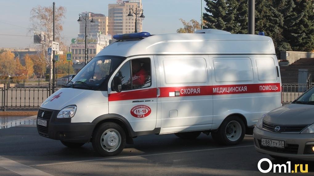 Машину отбросило на пешехода. В Омской области в ДТП погибли два человека