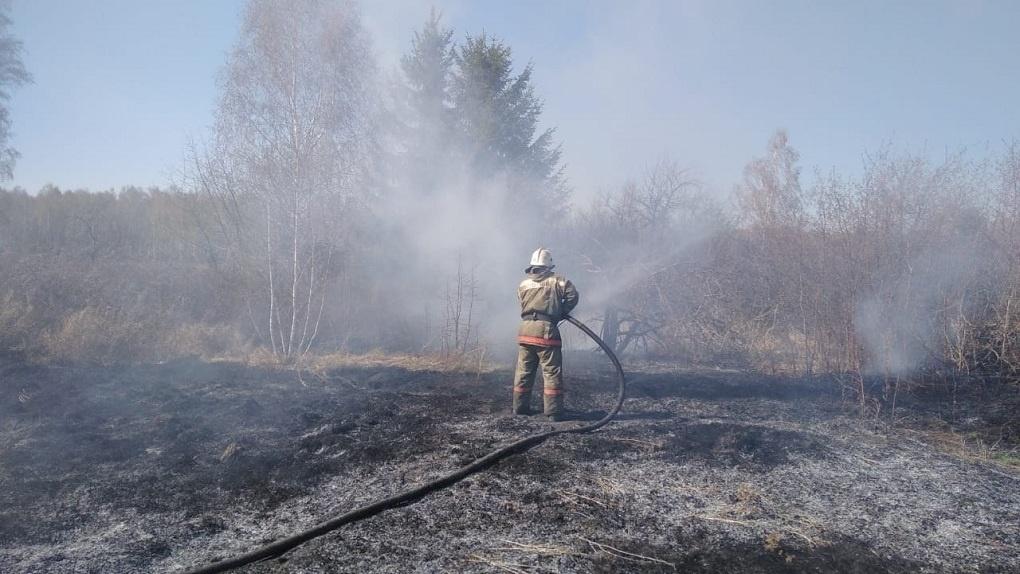 В Омской области вновь бушуют пожары