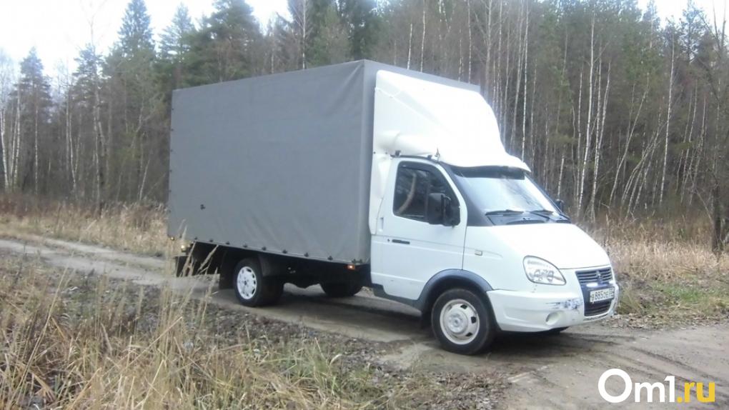 Крупный улов: в Омской области воры обчистили дом при помощи грузового такси