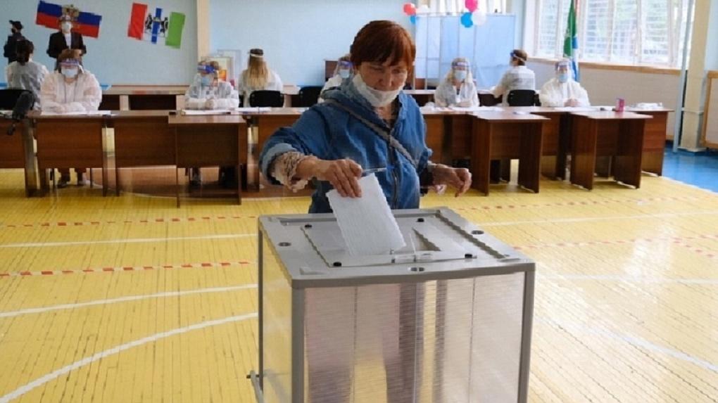 Новосибирская общественная палата создаёт движение «За честные выборы 2020»