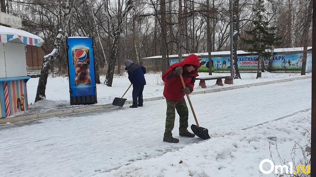 Омских водителей предупредили о метели и обильных снегопадах