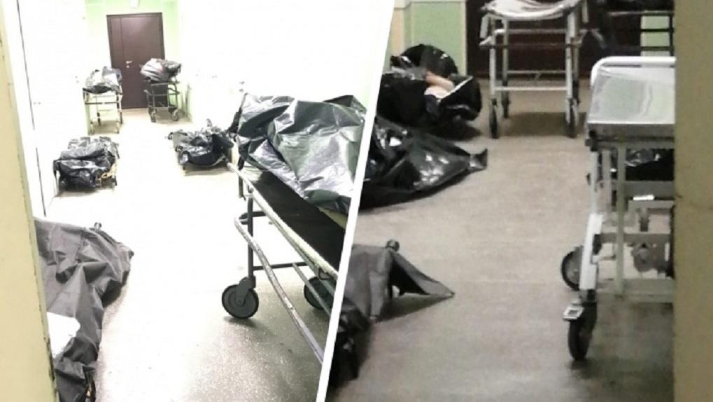 Новосибирцев шокировали кадры переполненного морга: трупы лежат прямо в коридорах