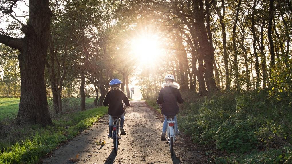 Парки и набережная: лучшие места для катания на велосипеде в Новосибирске. КАРТА