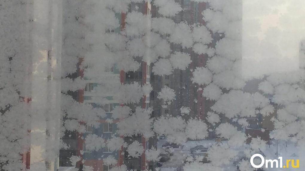 Мороз до -46 градусов и аномальный снег: какая погода ждёт новосибирсцев в последние дни декабря?