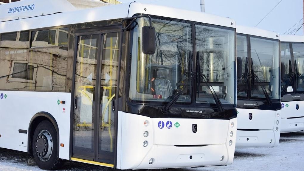 Летом в омских автобусах могут возникнуть длинные очереди за билетами