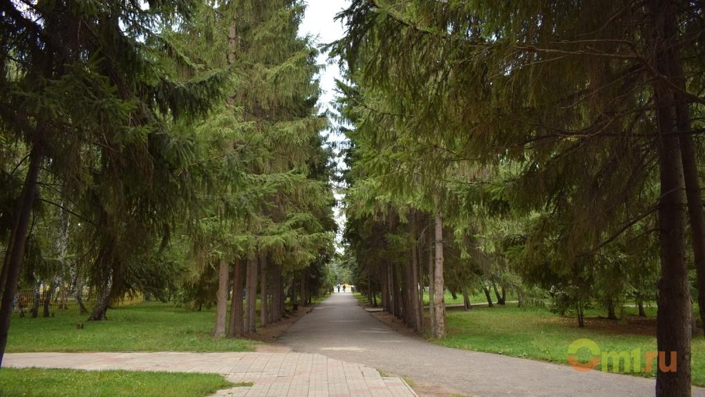 В Омске от клещей обработают еще 54 территории — СПИСОК
