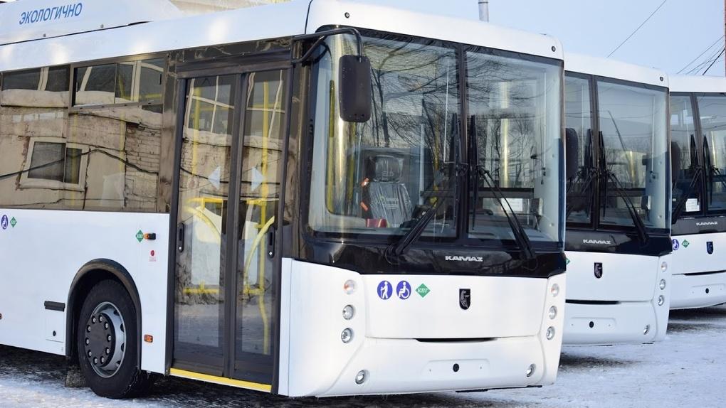 Из Омска запустят автобусные рейсы в Узбекистан