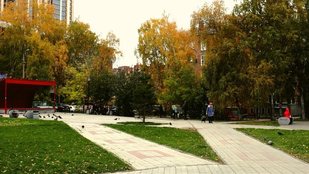 Новосибирцев просят проголосовать за название сквера «Лучистый»