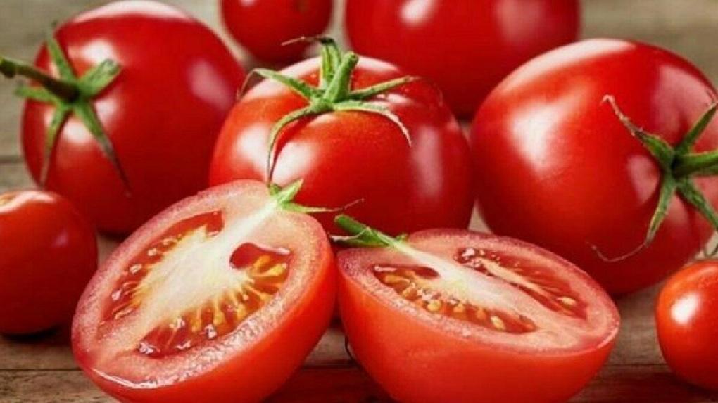 Опасные помидоры из Казахстана запретили ввозить в Новосибирскую область