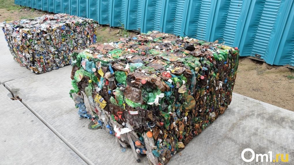 Названо новое место под мусорный полигон в Новосибирской области