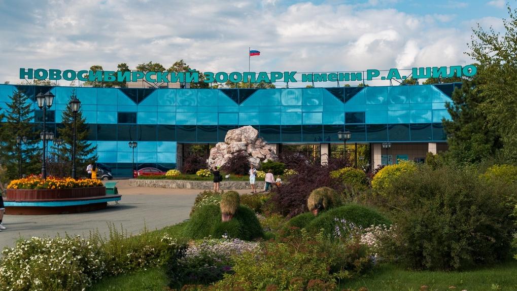 Новосибирский зоопарк снял запрет на продажу билетов в кассах