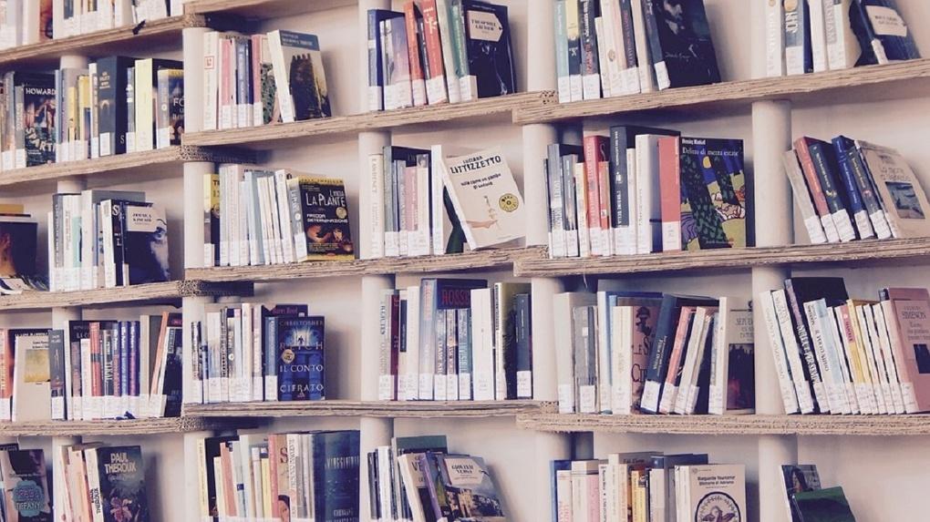 В 2019 году омичи смогут бесплатно прочесть более 2 000 книг современных авторов