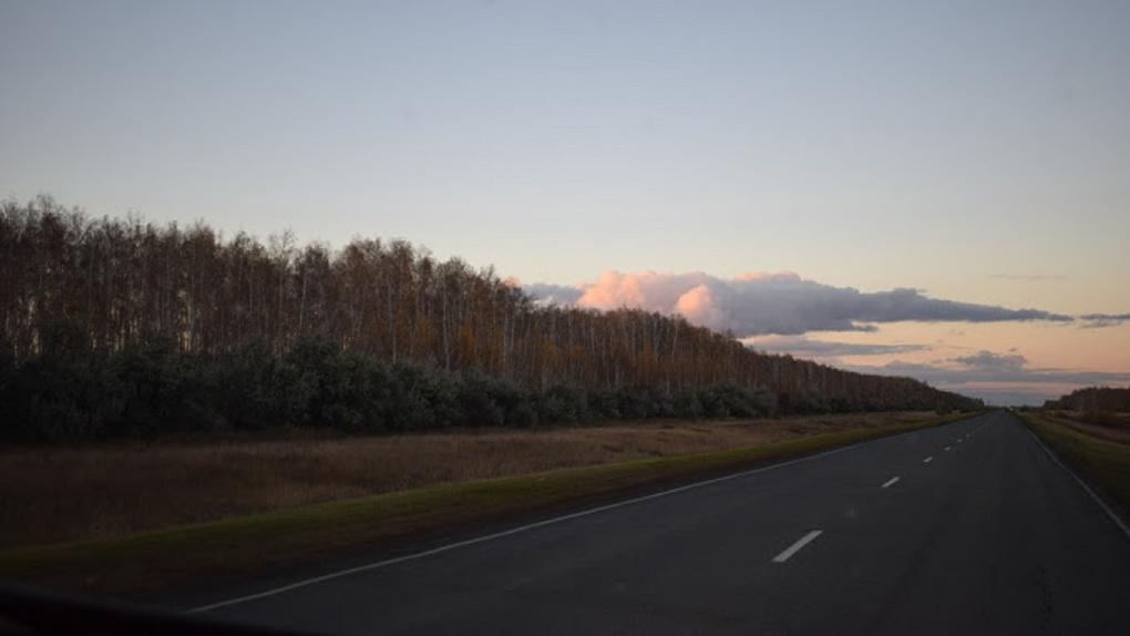 Иностранец, несмотря на запрет, пешком дошел до Омской области