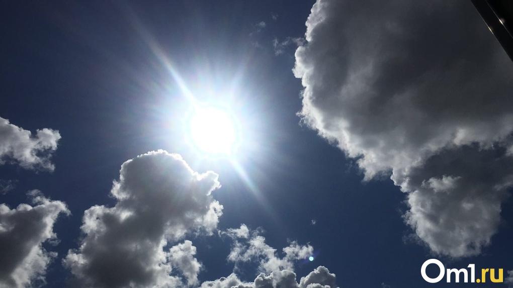 В Новосибирск идёт аномальная жара