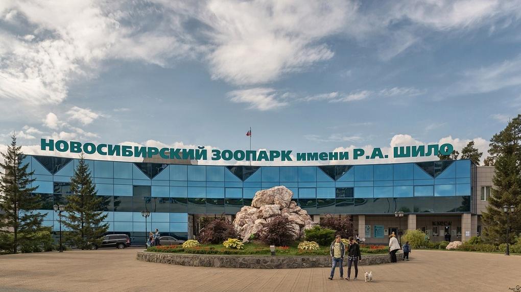 Питомцы Новосибирского зоопарка останутся без света ради «Часа Земли»
