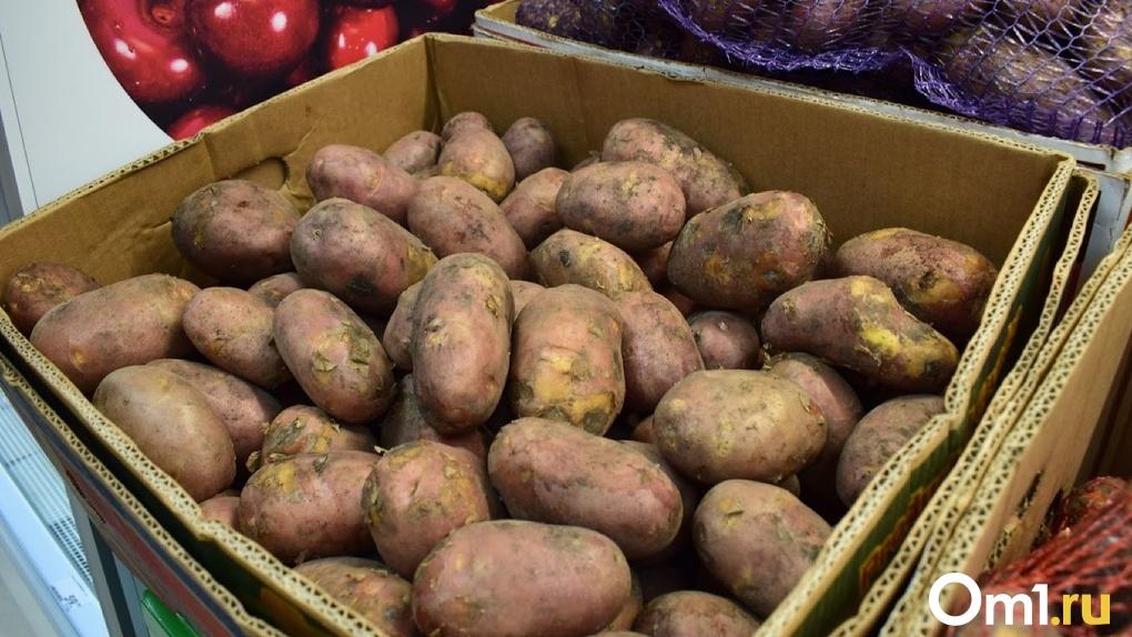 Омичам пообещали дефицит картофеля в этом году. Цены на него могут подскочить