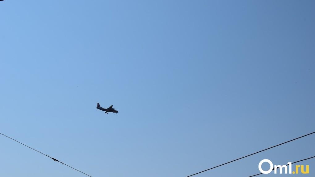 Птица помешала взлёту самолёта из Сочи в Новосибирск