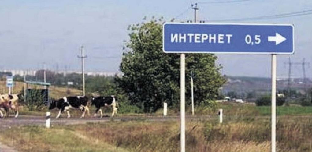 В Омской области наказали чиновника, который скрывал от общества доходы своих коллег