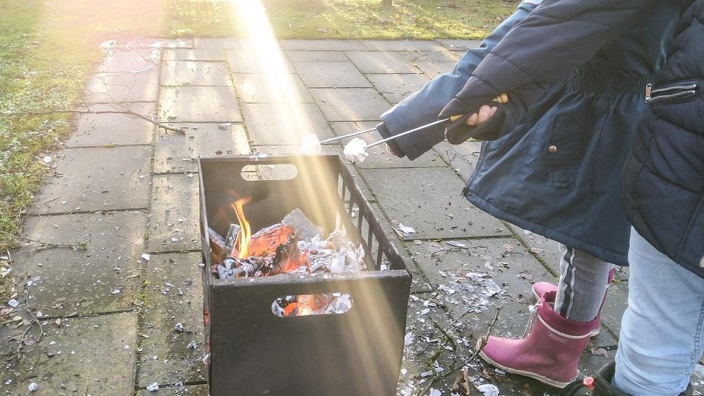 Из-за пожара, устроенного детьми, многодетная омичка может лишиться родительских прав