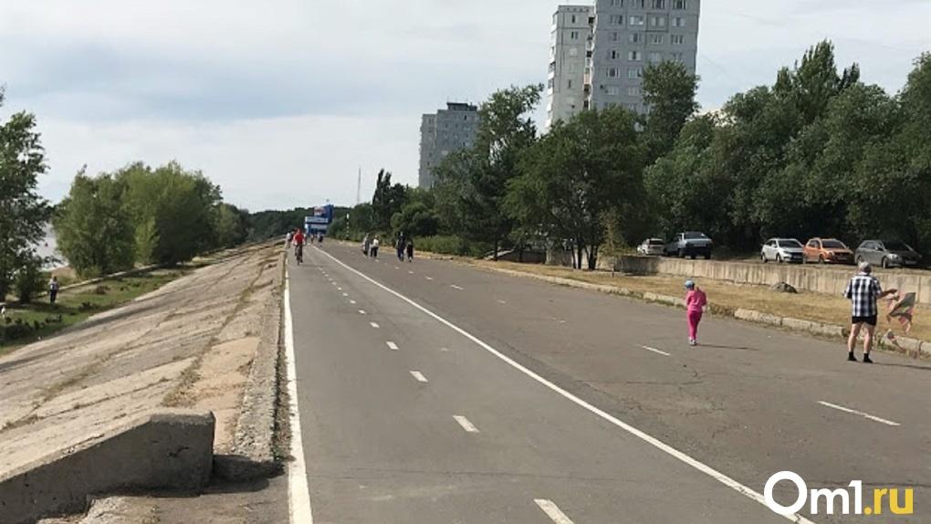В Омске создадут самую длинную на материке велопешеходную дорожку