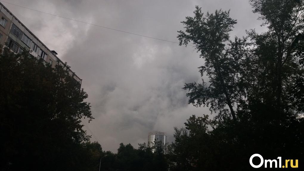 На Новосибирск надвигается мощный ветер