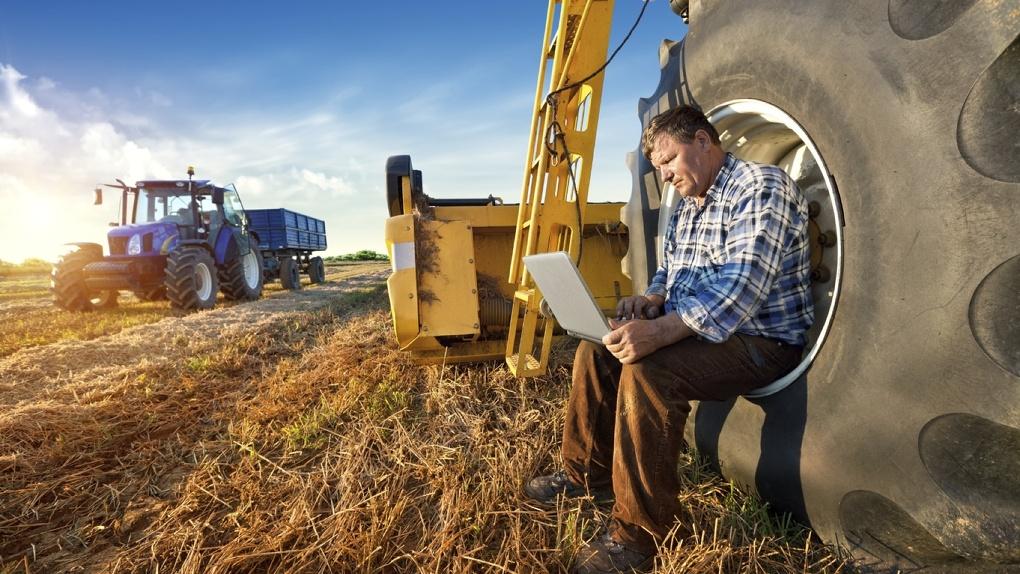 Медведев выделил Омской области почти полмиллиарда на сельское хозяйство