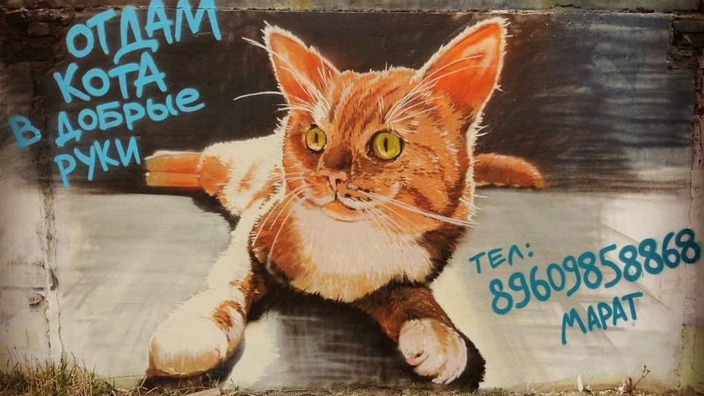 Омский художник пристраивает кота с помощью граффити