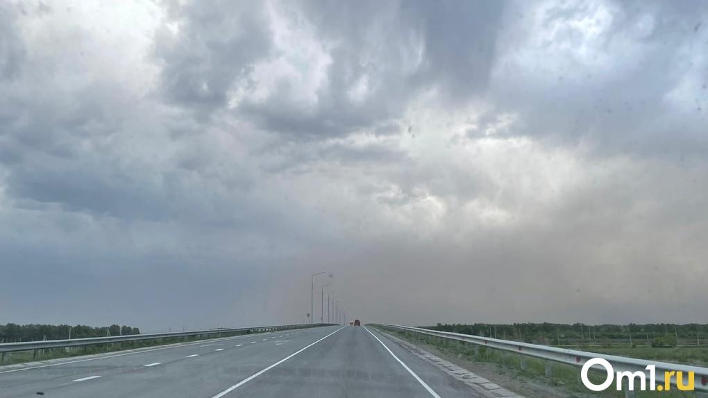 Стала известна возможная причина страшного ДТП на «трассе смерти» Омск – Тюмень