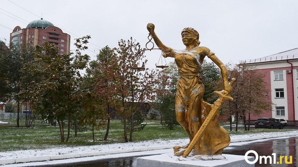 Новосибирского риелтора отправили в колонию за мошенничество на 292 млн рублей