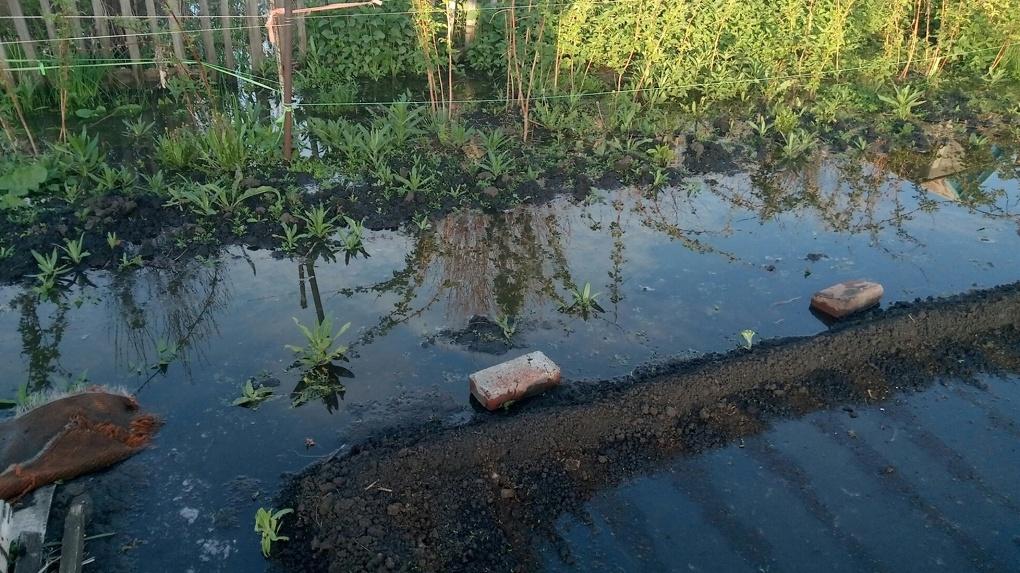 У омских дачников «из-за вопиющей халатности» затопило 15 участков