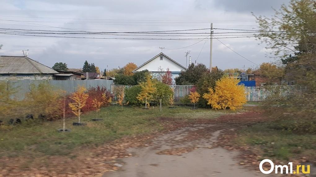 Село в Казахстане закрыли на карантин из-за омича с коронавирусом