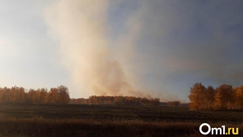 В атмосфере Омска зафиксировали повышенное содержание химического вещества